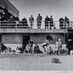 Coney Island Polar Bears,  Brooklyn, c1951
